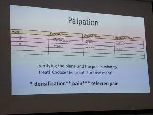 Fascial Manipulation - palpation chart